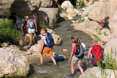Wandelreis Jordanië: Jerash, kloven, Petra & Wadi Rum | Snow Leopard (13)