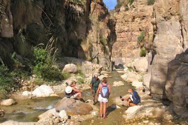 Wandelreis Jordanië: Jerash, kloven, Petra & Wadi Rum | Snow Leopard (14)