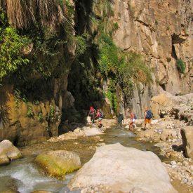 Wandelreis Jordanië: Jerash, kloven, Petra & Wadi Rum | Snow Leopard (18)