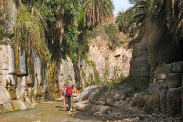 Wandelreis Jordanië: Jerash, kloven, Petra & Wadi Rum | Snow Leopard (23)