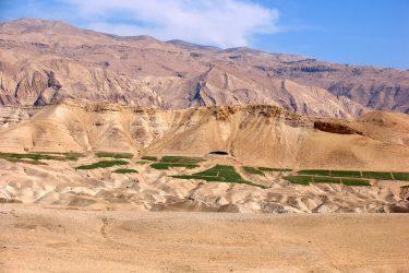 Wandelreis Jordanië: Jerash, kloven, Petra & Wadi Rum | Snow Leopard (25)