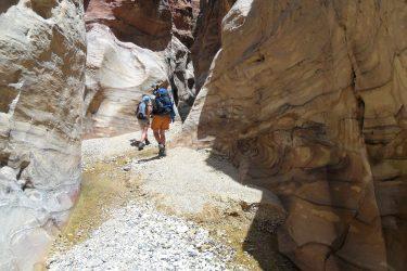 Wandelreis Jordanië: Jerash, kloven, Petra & Wadi Rum | Snow Leopard (45)