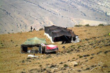 Wandelreis Jordanië: Jerash, kloven, Petra & Wadi Rum | Snow Leopard (50)