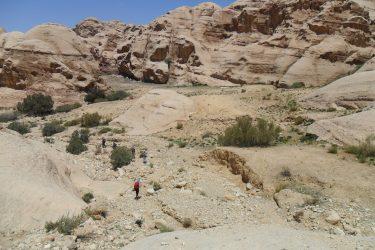 Wandelreis Jordanië: Jerash, kloven, Petra & Wadi Rum | Snow Leopard (55)