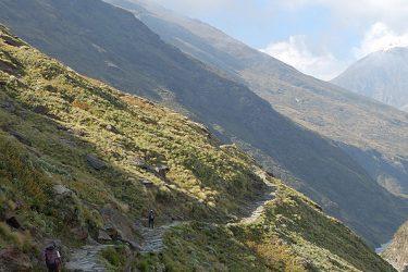 Trektocht India Garhwal Nanda Devi Santuary Basiskamp   Snow Leopard (11)