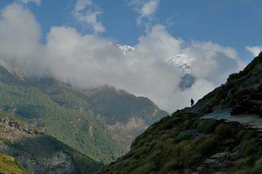 Trektocht India Garhwal Nanda Devi Santuary Basiskamp   Snow Leopard (14)