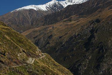 Trektocht India Garhwal Nanda Devi Santuary Basiskamp   Snow Leopard (16)