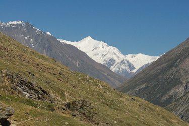 Trektocht India Garhwal Nanda Devi Santuary Basiskamp   Snow Leopard (17)