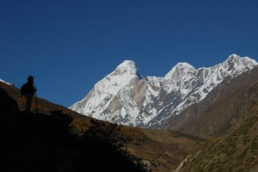 Trektocht India Garhwal Nanda Devi Santuary Basiskamp   Snow Leopard (26)