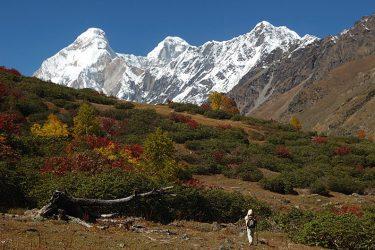 Trektocht India Garhwal Nanda Devi Santuary Basiskamp   Snow Leopard (30)