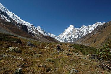 Trektocht India Garhwal Nanda Devi Santuary Basiskamp   Snow Leopard (33)