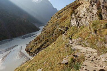 Trektocht India Garhwal Nanda Devi Santuary Basiskamp   Snow Leopard (42)