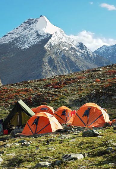 Ladakh Noord-India Leh Indus Markha Stok Nubra trektocht wandelreis | Snow Leopard (2)