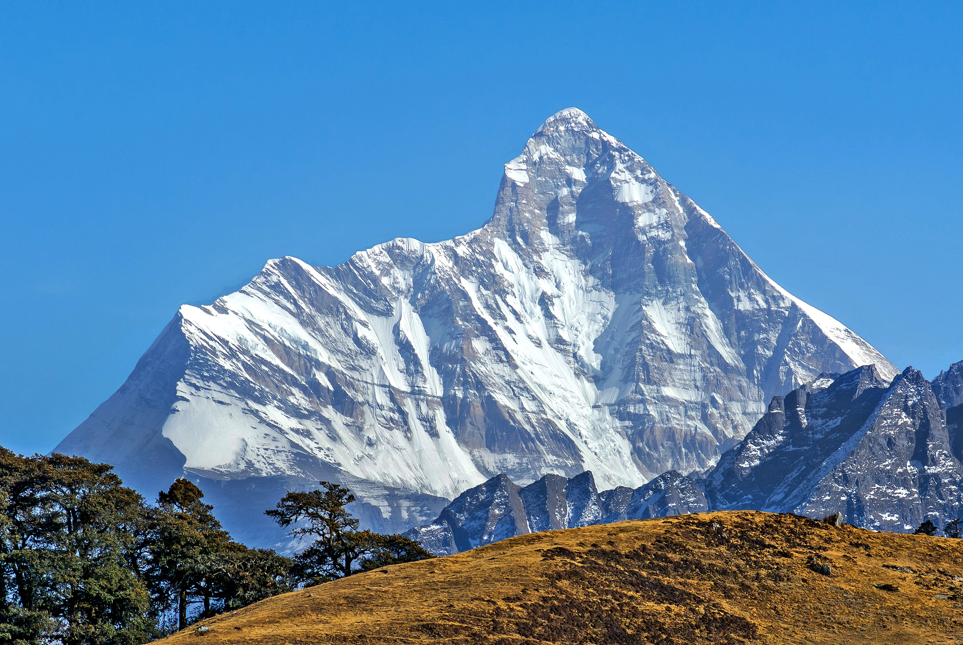 Trektocht India Garhwal Nanda Devi Santuary Basiskamp   Snow Leopard (57)