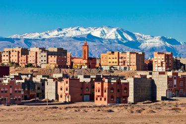 marokko alg Wandelreis Sahara Toubkal Tafraoute Saghro Woestijn Marrakech | Snow Leopard (5)
