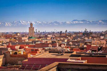 Marrakech Wandelreis Sahara Toubkal Tafraoute Saghro Woestijn Marokko | Snow Leopard (4)