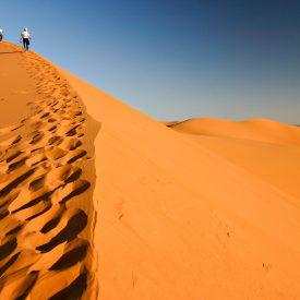 Wandelreis Sahara Toubkal Tafraoute Saghro Woestijn Marrakech Marokko | Snow Leopard (1)