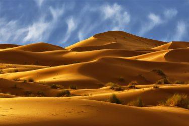 Wandelreis Sahara Toubkal Tafraoute Saghro Woestijn Marrakech Marokko | Snow Leopard (4)