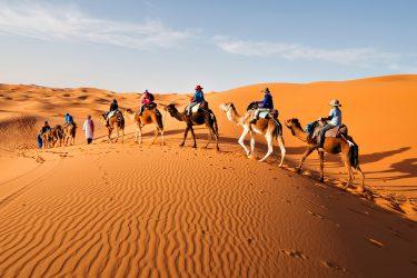 Wandelreis Sahara Toubkal Tafraoute Saghro Woestijn Marrakech Marokko | Snow Leopard (5)