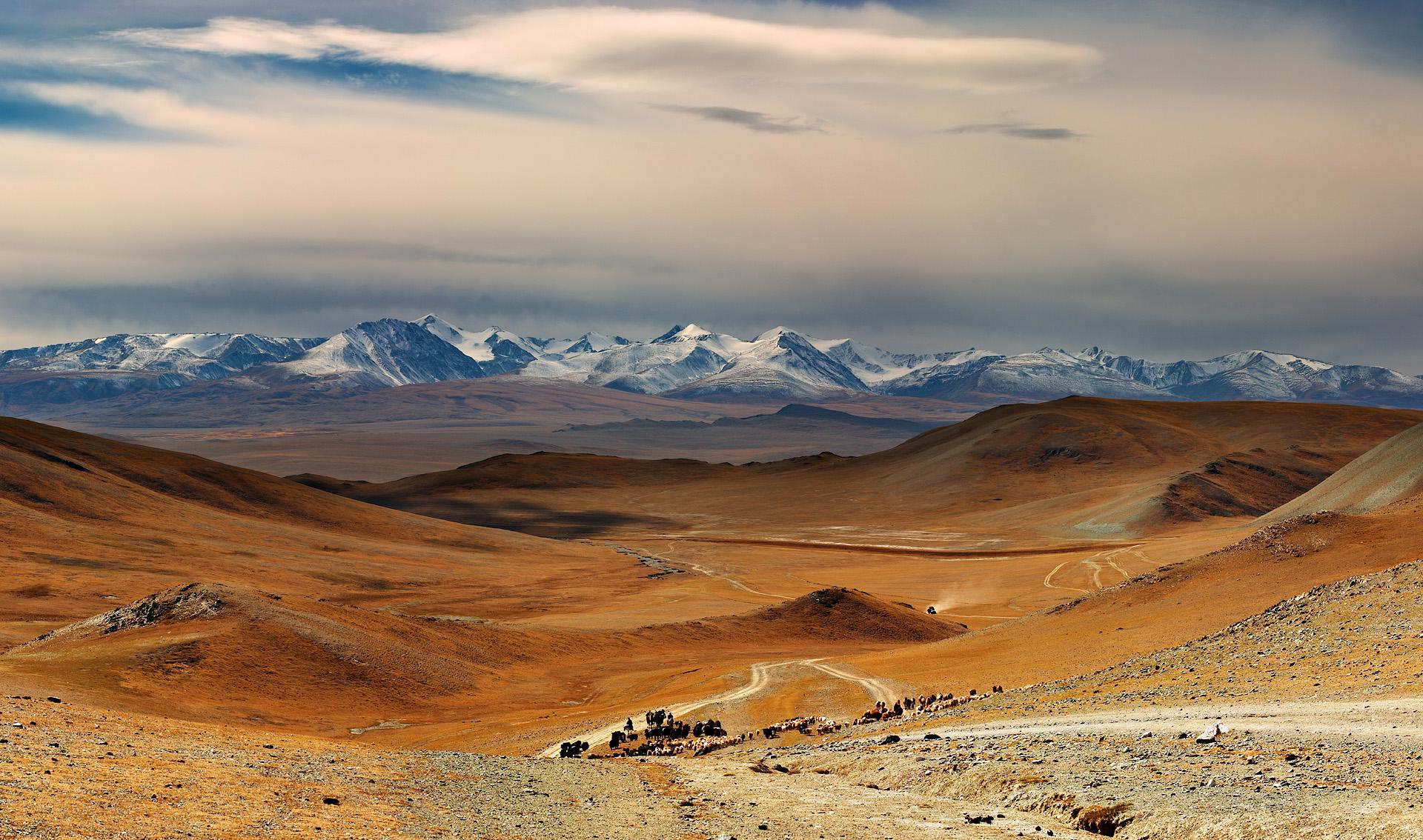 Mongolië wandelreis trektocht Khövsgöl , Khangai Nuruu, Gobi woestijn | HT & Snow Leopard 15