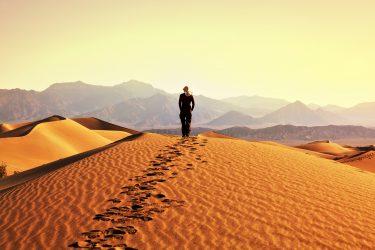 Mongolië wandelreis trektocht Khövsgöl , Khangai Nuruu, Gobi woestijn | HT & Snow Leopard 11