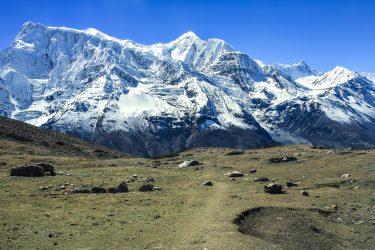 Trektocht Rond de Annapurna Sanctuary Pokhara Nepal | Snow Leopard (27)