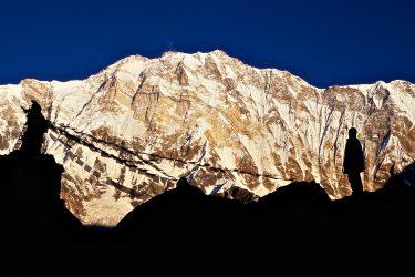 Trektocht Rond de Annapurna Sanctuary Pokhara Nepal   Snow Leopard (28)