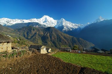 Trektocht Rond de Annapurna Sanctuary Pokhara Nepal | Snow Leopard (36)
