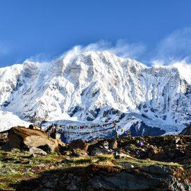 Trektocht Rond de Annapurna Sanctuary Pokhara Nepal | Snow Leopard (53)