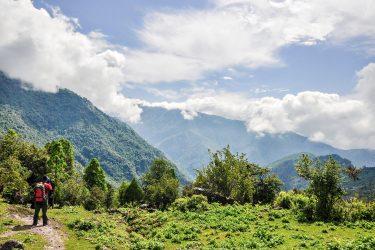 Trektocht Rond de Annapurna Sanctuary Pokhara Nepal   Snow Leopard (57)