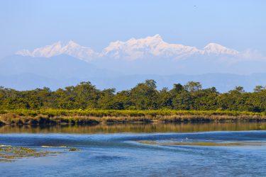 Safari Chitwan National Park Nepal | Snow Leopard (3)