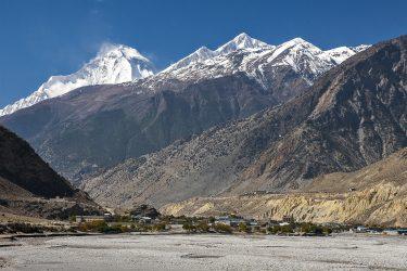 Trektocht Rond de Dhaulagiri Nepal | Snow Leopard (211)