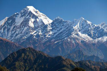Trektocht Rond de Dhaulagiri Nepal | Snow Leopard (311)