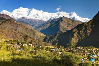 Trektocht Rond de Dhaulagiri Nepal | Snow Leopard (511)