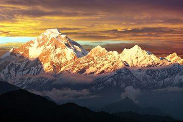 Trektocht Rond de Dhaulagiri Nepal | Snow Leopard (91)