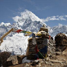 Expeditie trektocht Island Peak 6189m Imja Tse Nepal | Snow Leopard (11)