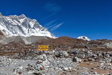 Expeditie trektocht Island Peak 6189m Imja Tse Nepal | Snow Leopard (12)