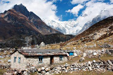 Trektocht Langtang Gosaikund Helambu Nepal | Snow Leopard (14)