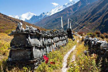 Trektocht Langtang Gosaikund Helambu Nepal | Snow Leopard (3)