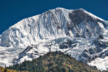 Trektocht Rond de Manaslu Nepal | Snow Leopard (12)