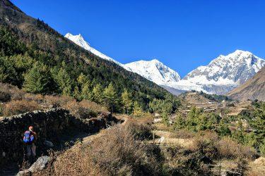 Trektocht Rond de Manaslu Nepal | Snow Leopard (16)
