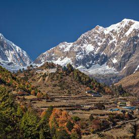 Trektocht Rond de Manaslu Nepal | Snow Leopard (22)