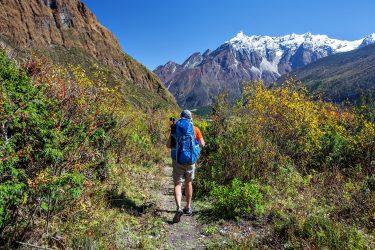 Trektocht Rond de Manaslu Nepal | Snow Leopard (8)