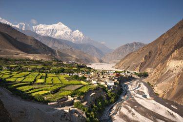 Trektocht Upper Mustang Lo Manthang Nepal   Snow Leopard (11)