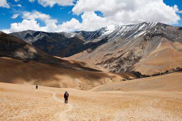 Trektocht Upper Mustang Lo Manthang Nepal   Snow Leopard (14)