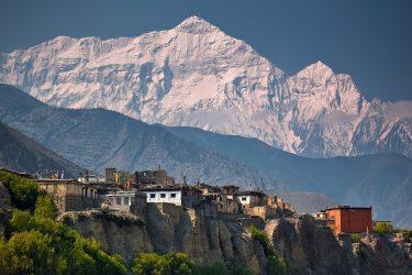 Trektocht Upper Mustang Lo Manthang Nepal   Snow Leopard (16)