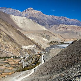 Trektocht Upper Mustang Lo Manthang Nepal | Snow Leopard (2)