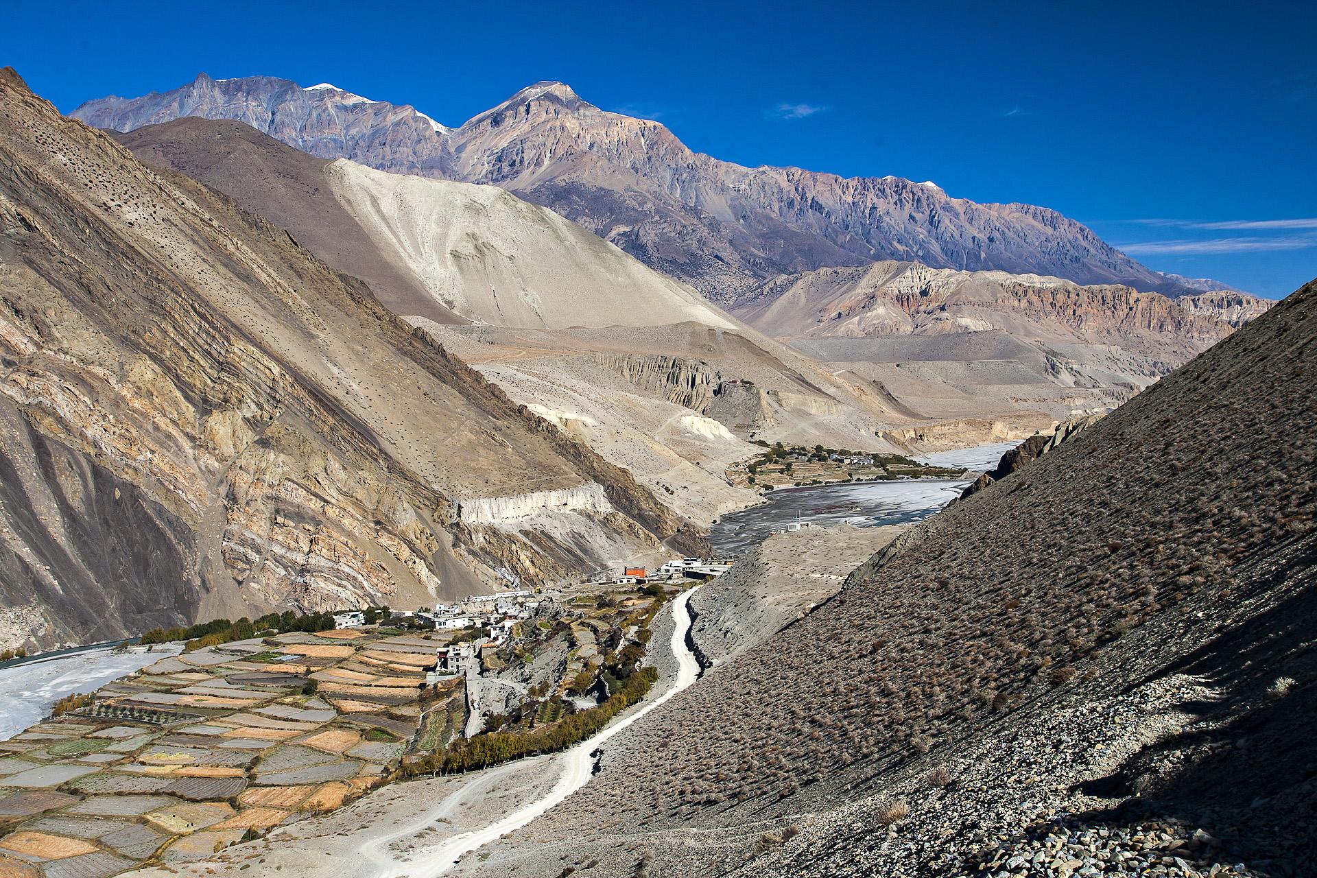 Trektocht Upper Mustang Lo Manthang Nepal   Snow Leopard (2)
