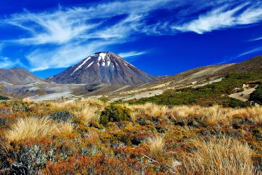 Nieuw-Zeeland Individuele Autorondreis of groepsrondreis Aotearoa | Snow Leopard (01)
