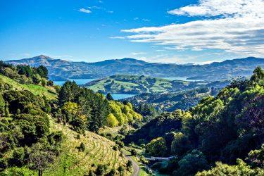 Nieuw-Zeeland Individuele Autorondreis of groepsrondreis Aotearoa | Snow Leopard (23)